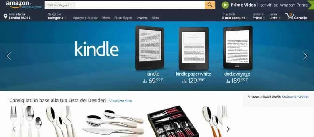 Differenze tra Amazon ed eBay