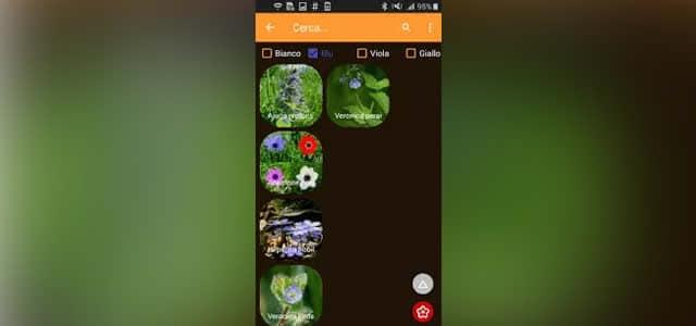 Le migliori App per riconoscere le piante