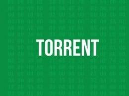 I Migliori Motori di Ricerca Torrent